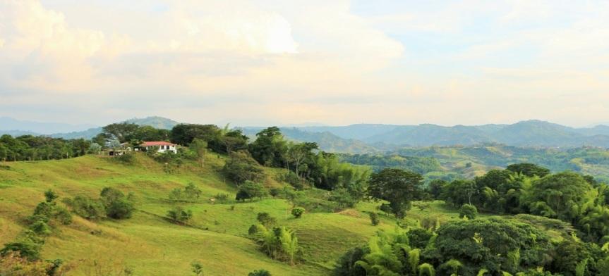 altomira-bosque-seco-tropical
