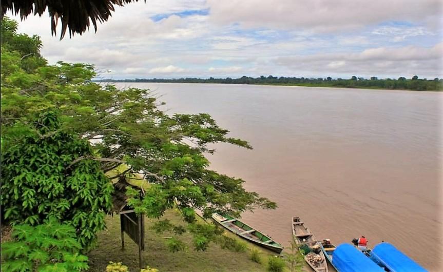 La Amazonía y losLLanos