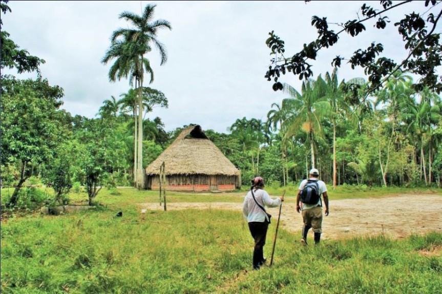 Departamento del Amazonas