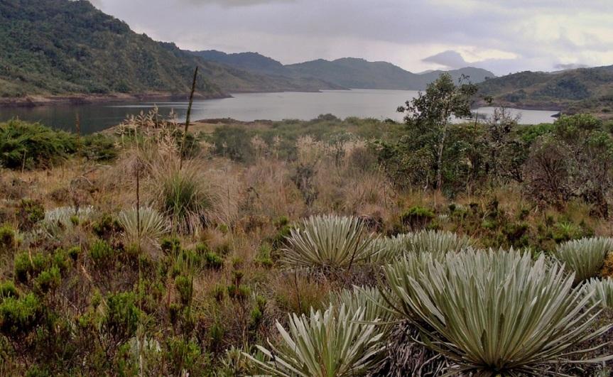 chingaza-parquesnaturales-ecoturismo