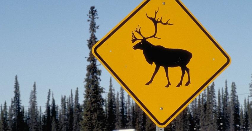 Glennallen en Alaska