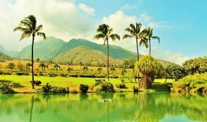 hawai-kahului-maui-cruceros-altomira