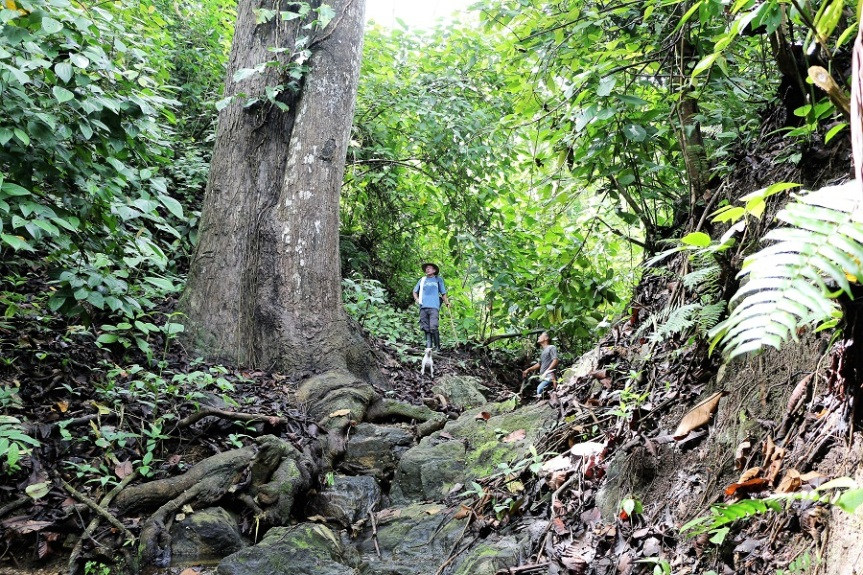 3-anaconda-rio-dondiego-reserva-natural