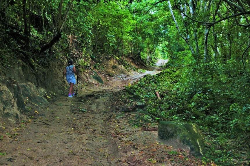 1-tayrona-playas-de-arrecifes-parques-naturales-senderos