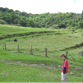 11-pacho-cundinamarca-toros-de-lidia