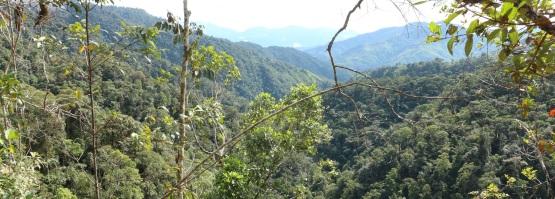 15-tatama-parques-naturales-finca-montezuma-choco