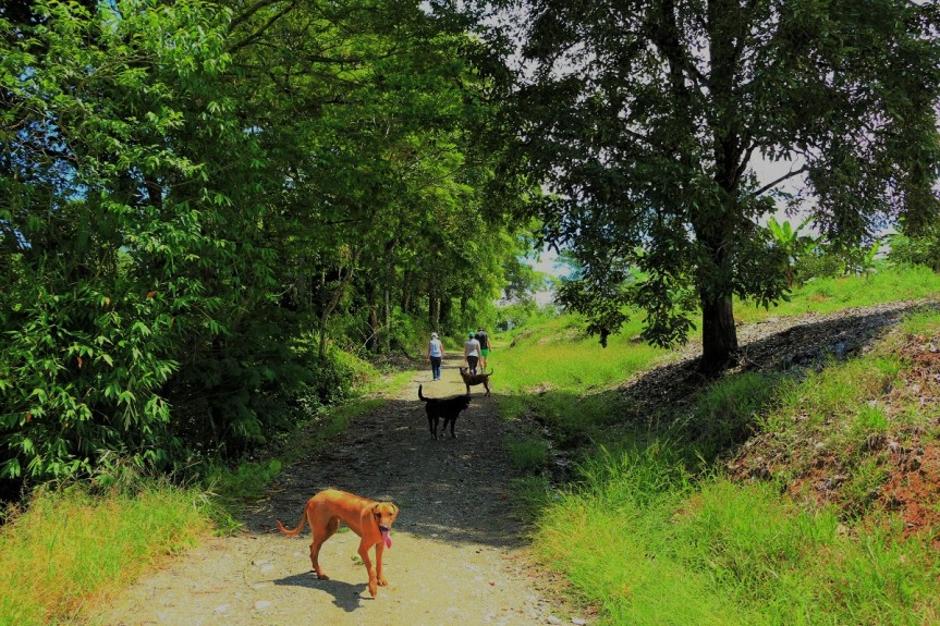 finca-altomira-senderismo-caminatas-2