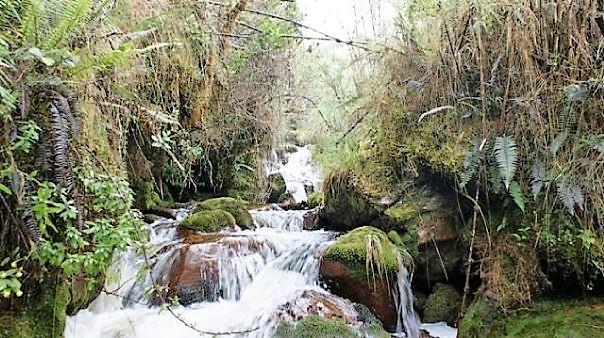 Parque Ecológico Matarredonda