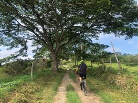 santiago-finca-altomira-paseos-en-bicicleta-ganaderia